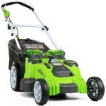 Lastnosti električne kosilnice Greenworks 25302
