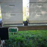 Napredna tehtnica za nadzor parametrov čebeljega panja